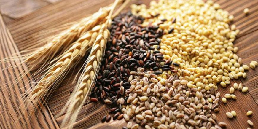 TRUEWAY FARMS ORGANIC WHEAT
